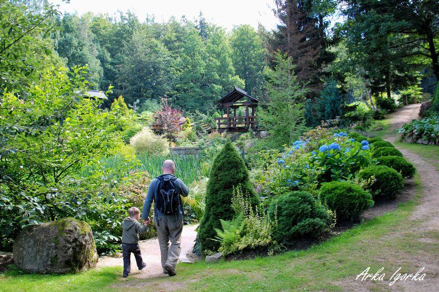 podgórzyn ogród