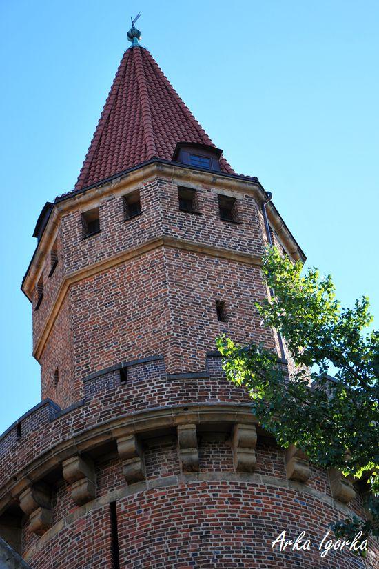 wieża ś.jadwigi kawałek